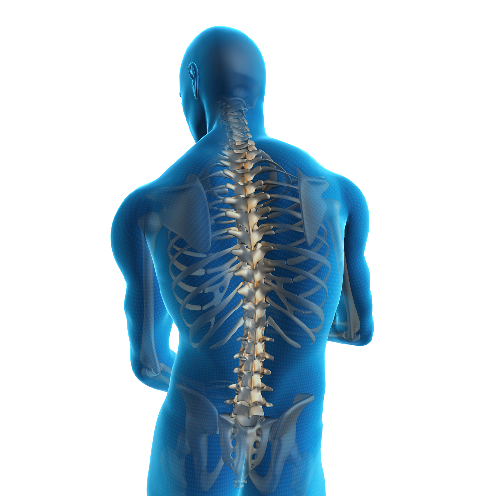 Spine and Disc Center of Lakewood Ranch